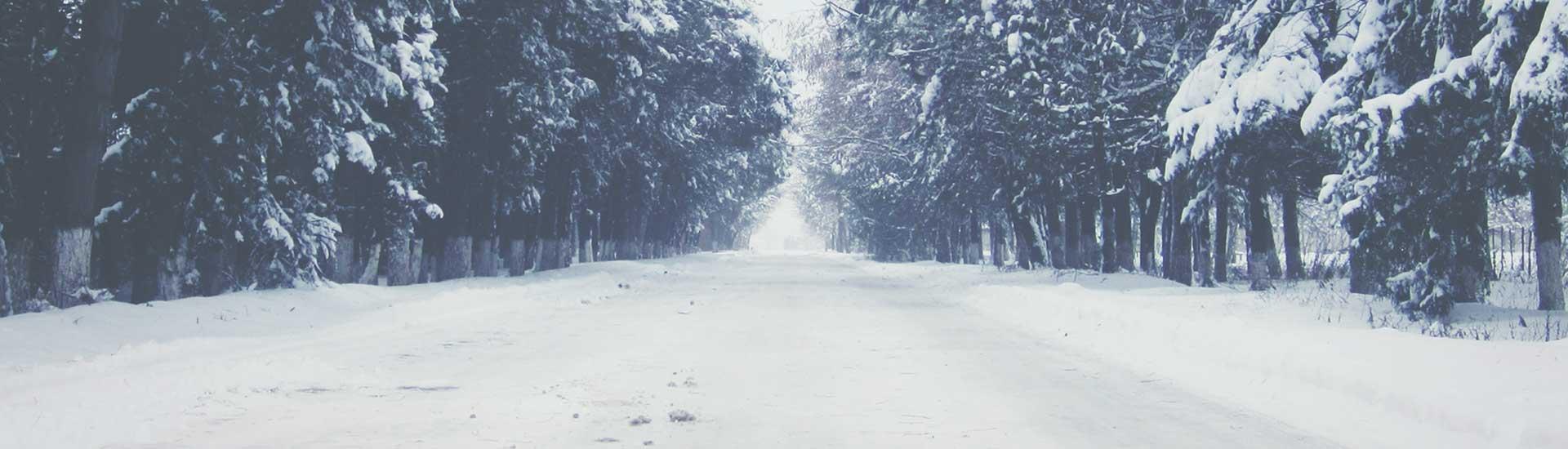 winterbg